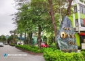 """Cửa Tiền Home: """"Gieo mầm"""" sống xanh tại trung tâm TP Vinh"""